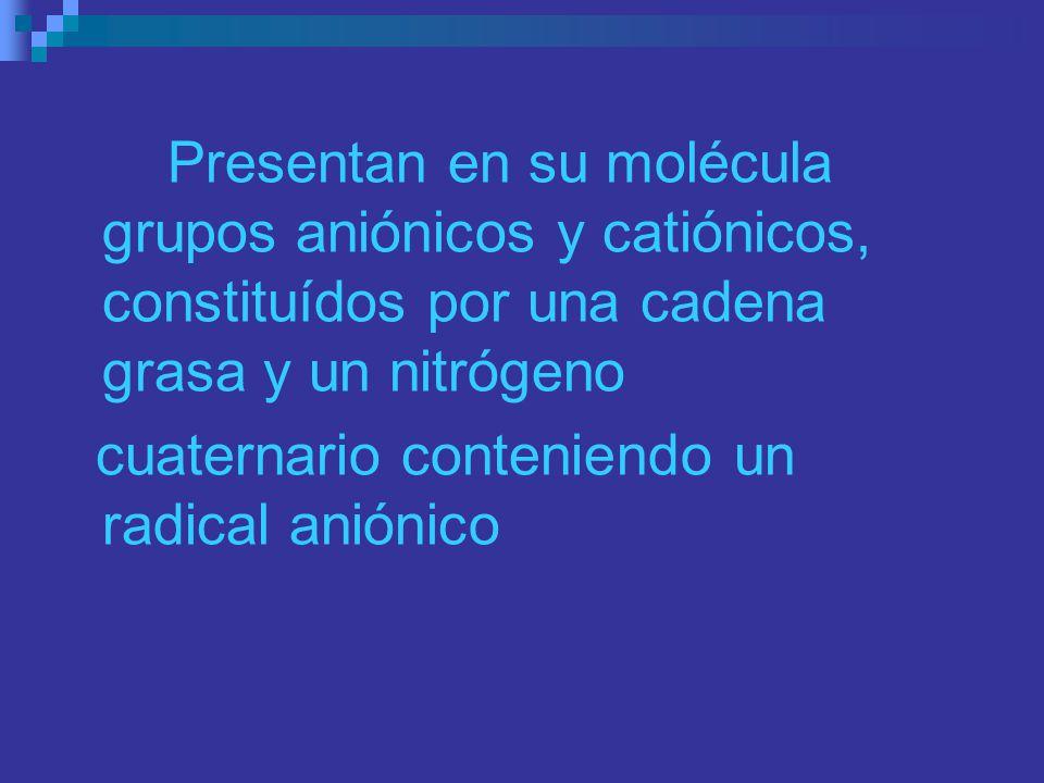 Presentan en su molécula grupos aniónicos y catiónicos, constituídos por una cadena grasa y un nitrógeno cuaternario conteniendo un radical aniónico