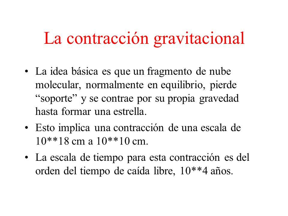 La contracción gravitacional La idea básica es que un fragmento de nube molecular, normalmente en equilibrio, pierde soporte y se contrae por su propia gravedad hasta formar una estrella.