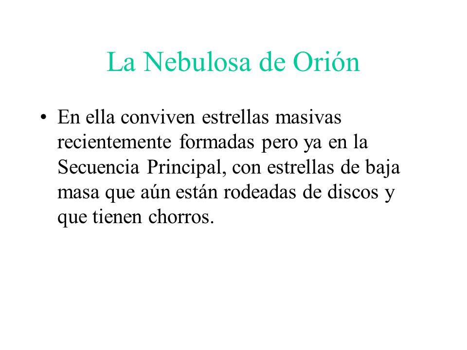 La Nebulosa de Orión En ella conviven estrellas masivas recientemente formadas pero ya en la Secuencia Principal, con estrellas de baja masa que aún están rodeadas de discos y que tienen chorros.