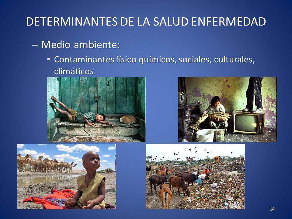 14 DETERMINANTES DE LA SALUD ENFERMEDAD – Medio ambiente: Contaminantes físico químicos, sociales, culturales, climáticos Contaminantes físico químico