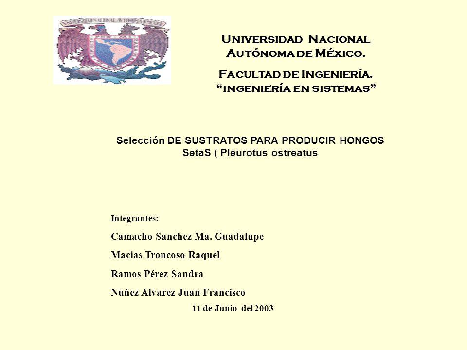 Universidad Nacional Autónoma de México. Facultad de Ingeniería. ingeniería en sistemas Integrantes: Camacho Sanchez Ma. Guadalupe Macias Troncoso Raq