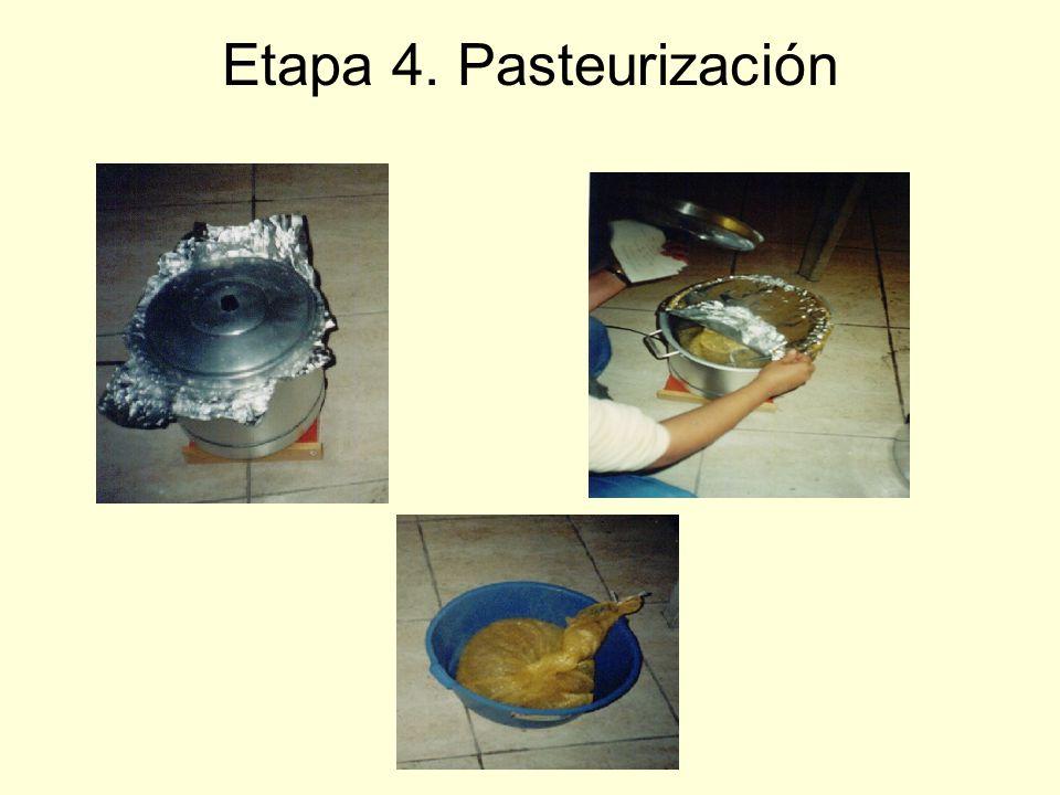 Etapa 4. Pasteurización