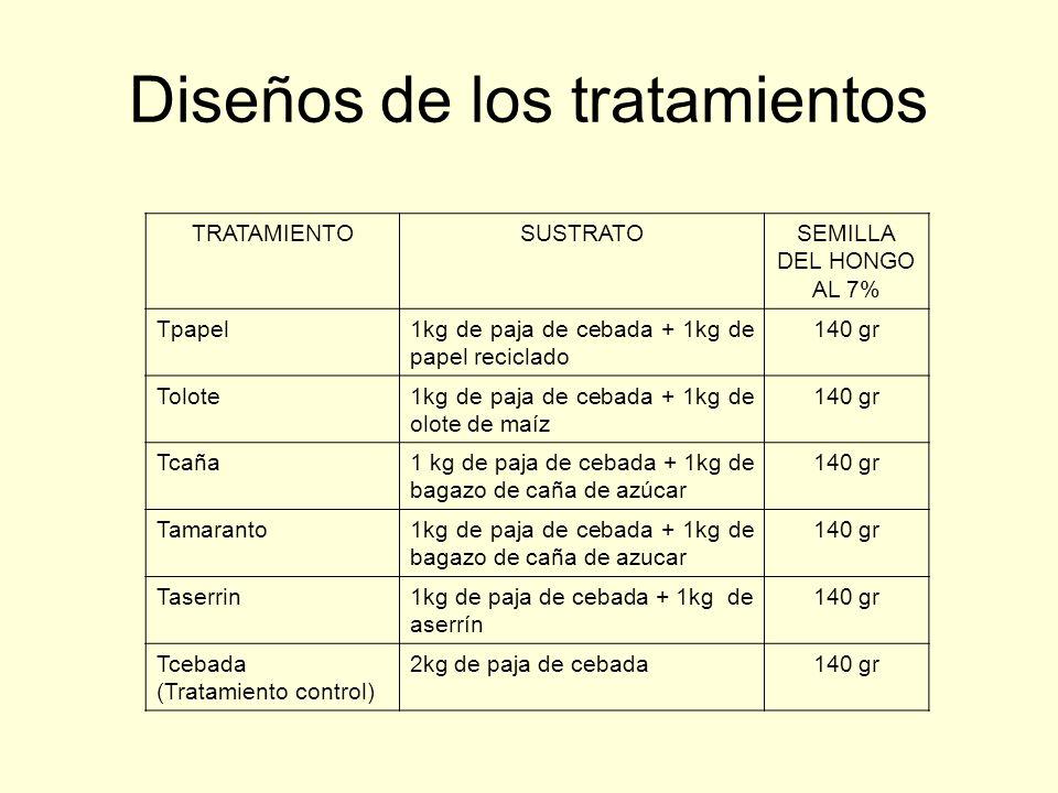 Diseños de los tratamientos TRATAMIENTOSUSTRATOSEMILLA DEL HONGO AL 7% Tpapel1kg de paja de cebada + 1kg de papel reciclado 140 gr Tolote1kg de paja d