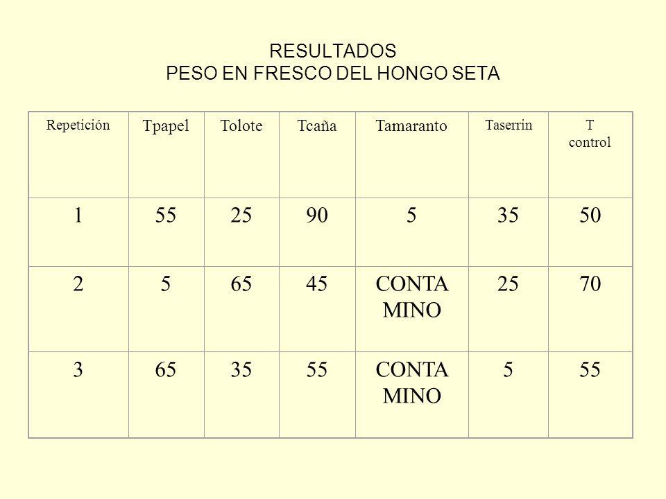 RESULTADOS PESO EN FRESCO DEL HONGO SETA Repetición TpapelToloteTcañaTamaranto TaserrinT control 155259053550 256545CONTA MINO 2570 3653555CONTA MINO