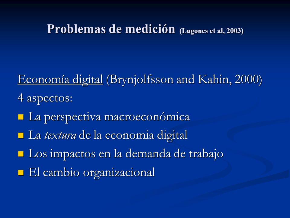 Problemas de medición (Lugones et al, 2003) Economía digital (Brynjolfsson and Kahin, 2000) 4 aspectos: La perspectiva macroeconómica La perspectiva m