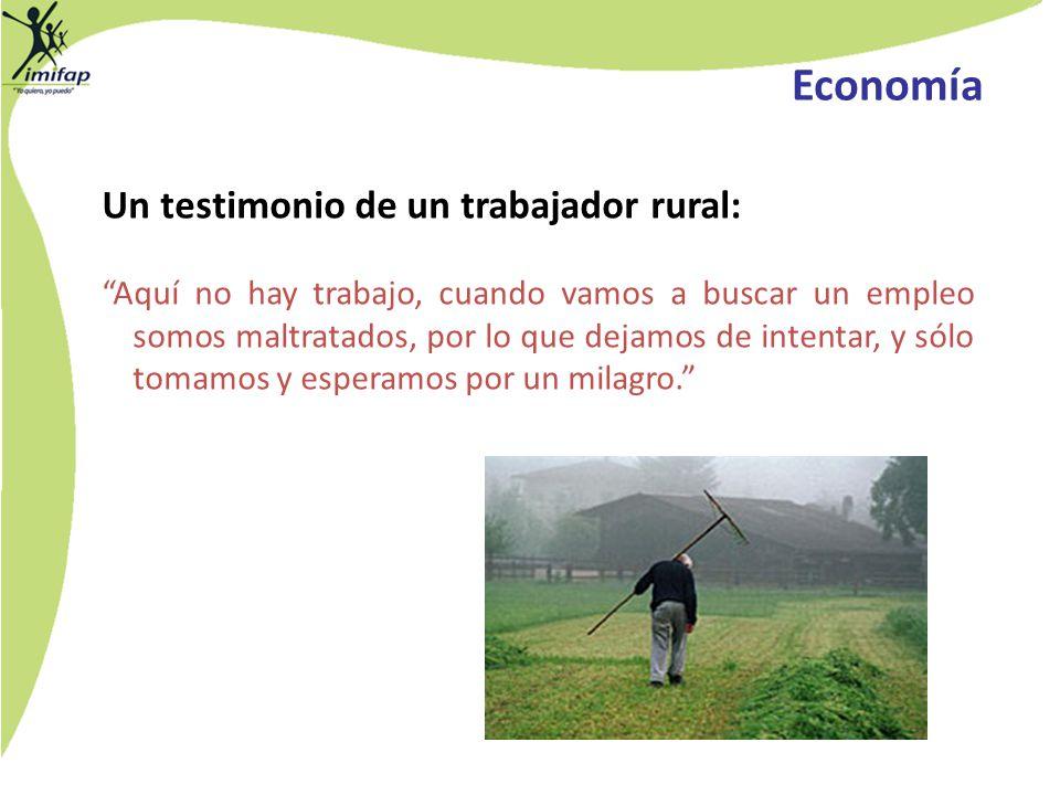 Economía Un testimonio de un trabajador rural: Aquí no hay trabajo, cuando vamos a buscar un empleo somos maltratados, por lo que dejamos de intentar,