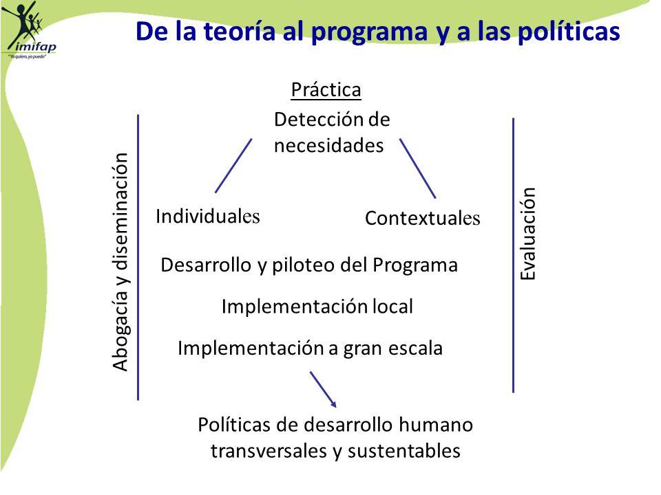 Práctica Detección de necesidades Individual es Contextual es Desarrollo y piloteo del Programa Implementación local Evaluación Implementación a gran