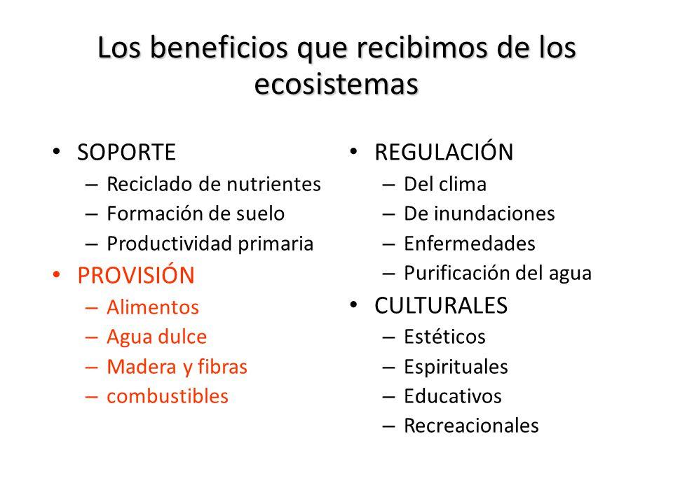 Los beneficios que recibimos de los ecosistemas SOPORTE – Reciclado de nutrientes – Formación de suelo – Productividad primaria PROVISIÓN – Alimentos – Agua dulce – Madera y fibras – combustibles REGULACIÓN – Del clima – De inundaciones – Enfermedades – Purificación del agua CULTURALES – Estéticos – Espirituales – Educativos – Recreacionales