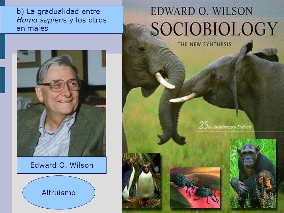 Edward O. Wilson Altruismo b) La gradualidad entre Homo sapiens y los otros animales