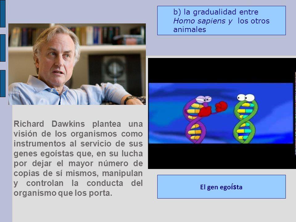 Richard Dawkins plantea una visión de los organismos como instrumentos al servicio de sus genes egoístas que, en su lucha por dejar el mayor número de copias de sí mismos, manipulan y controlan la conducta del organismo que los porta.