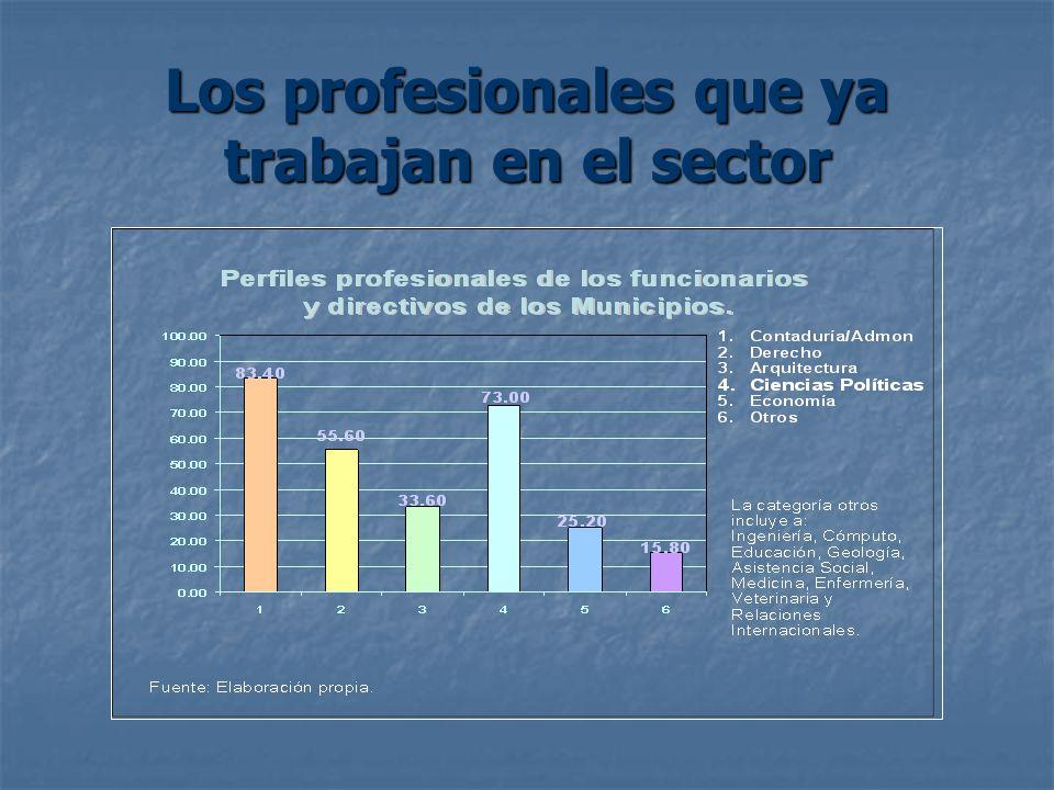 Los profesionales que ya trabajan en el sector