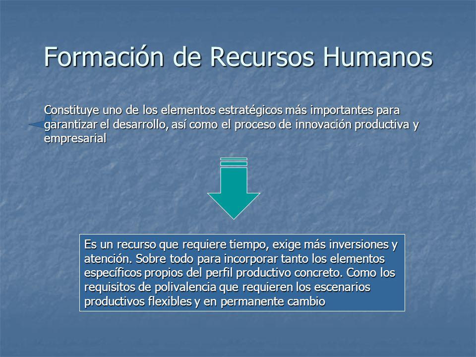 Formación de Recursos Humanos Constituye uno de los elementos estratégicos más importantes para garantizar el desarrollo, así como el proceso de innovación productiva y empresarial Es un recurso que requiere tiempo, exige más inversiones y atención.