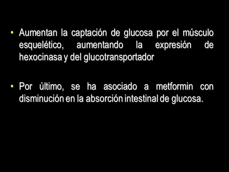 Aumentan la captación de glucosa por el músculo esquelético, aumentando la expresión de hexocinasa y del glucotransportadorAumentan la captación de gl