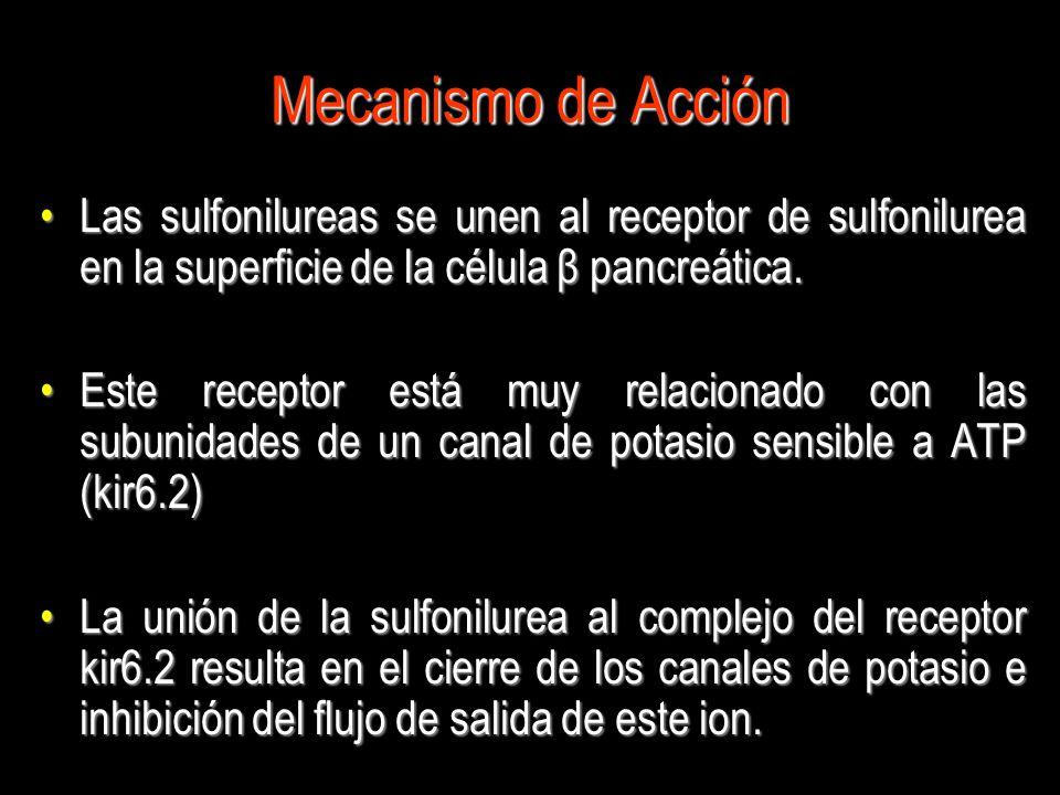 Mecanismo de Acción Las sulfonilureas se unen al receptor de sulfonilurea en la superficie de la célula β pancreática.Las sulfonilureas se unen al rec