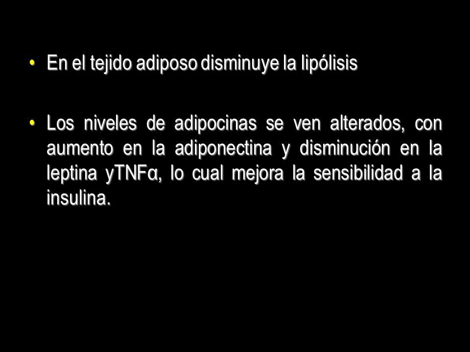 En el tejido adiposo disminuye la lipólisisEn el tejido adiposo disminuye la lipólisis Los niveles de adipocinas se ven alterados, con aumento en la a