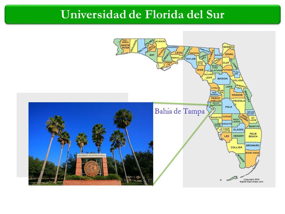 Universidad de Florida del Sur Bahía de Tampa