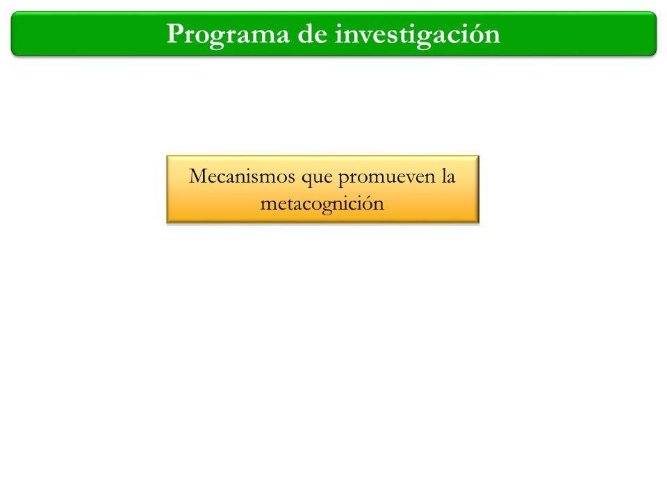 Programa de investigación Mecanismos que promueven la metacognición