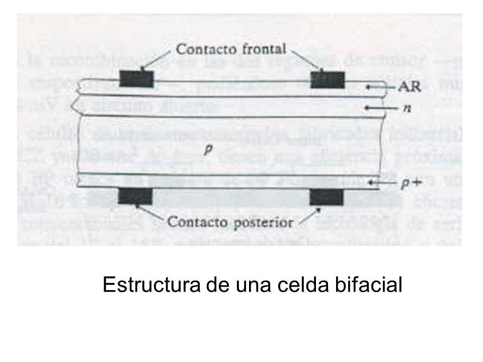 Estructura de una celda bifacial