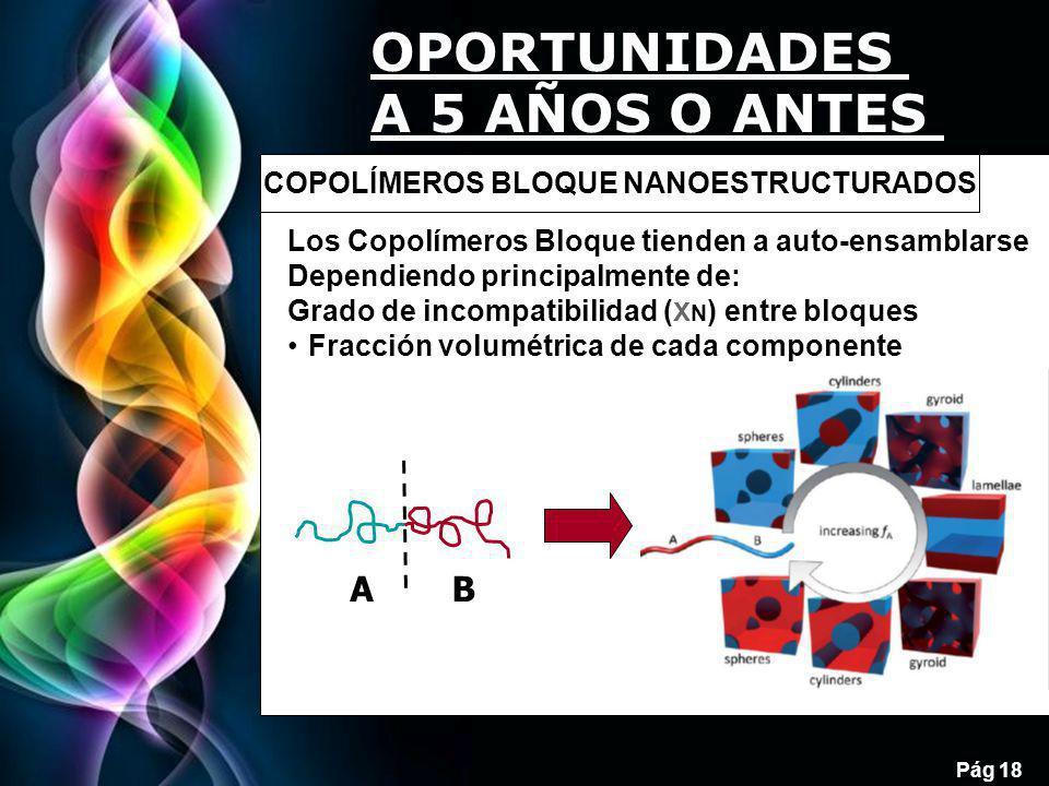 Free Powerpoint Templates Pág 18 AB Los Copolímeros Bloque tienden a auto-ensamblarse Dependiendo principalmente de: Grado de incompatibilidad ( X N ) entre bloques Fracción volumétrica de cada componente COPOLÍMEROS BLOQUE NANOESTRUCTURADOS OPORTUNIDADES A 5 AÑOS O ANTES
