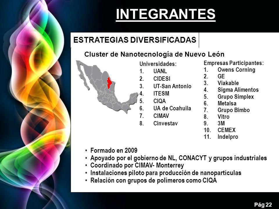 Free Powerpoint Templates Pág 22 ESTRATEGIAS DIVERSIFICADAS 22 Cluster de Nanotecnología de Nuevo León Empresas Participantes: 1.Owens Corning 2.GE 3.Viakable 4.Sigma Alimentos 5.Grupo Simplex 6.Metalsa 7.Grupo Bimbo 8.Vitro 9.3M 10.CEMEX 11.Indelpro Universidades: 1.UANL 2.CIDESI 3.UT-San Antonio 4.ITESM 5.CIQA 6.UA de Coahuila 7.CIMAV 8.Cinvestav Formado en 2009 Apoyado por el gobierno de NL, CONACYT y grupos industriales Coordinado por CIMAV- Monterrey Instalaciones piloto para producción de nanopartículas Relación con grupos de polímeros como CIQA INTEGRANTES