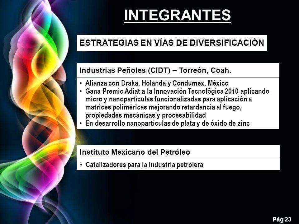 Free Powerpoint Templates Pág 23 ESTRATEGIAS EN VÍAS DE DIVERSIFICACIÓN 23 Industrias Peñoles (CIDT) – Torreón, Coah. Alianza con Draka, Holanda y Con
