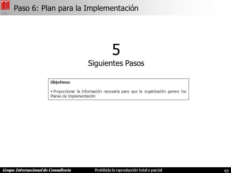 Grupo Internacional de ConsultoríaProhibida la reproducción total o parcial 65 Paso 6: Plan para la Implementación 5 Siguientes Pasos Objetivos: Proporcionar la información necesaria para que la organización genere los Planes de Implementación