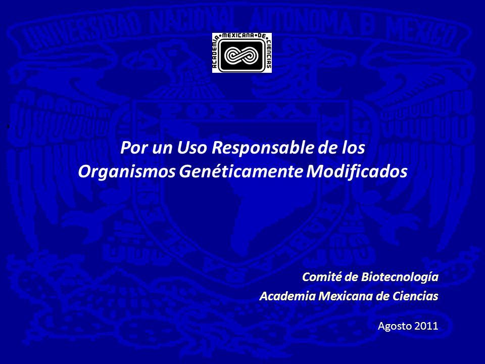Por un Uso Responsable de los Organismos Genéticamente Modificados Comité de Biotecnología Academia Mexicana de Ciencias Agosto 2011