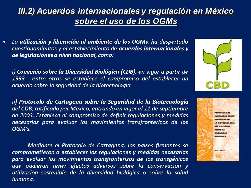 III.2) Acuerdos internacionales y regulación en México sobre el uso de los OGMs La utilización y liberación al ambiente de los OGMs, ha despertado cuestionamientos y el establecimiento de acuerdos internacionales y de legislaciones a nivel nacional, como: i) Convenio sobre la Diversidad Biológica (CDB), en vigor a partir de 1993, entre otros se establece el compromiso del establecer un acuerdo sobre la seguridad de la biotecnología ii) Protocolo de Cartagena sobre la Seguridad de la Biotecnología del CDB, ratificado por México, entrando en vigor el 11 de septiembre de 2003.