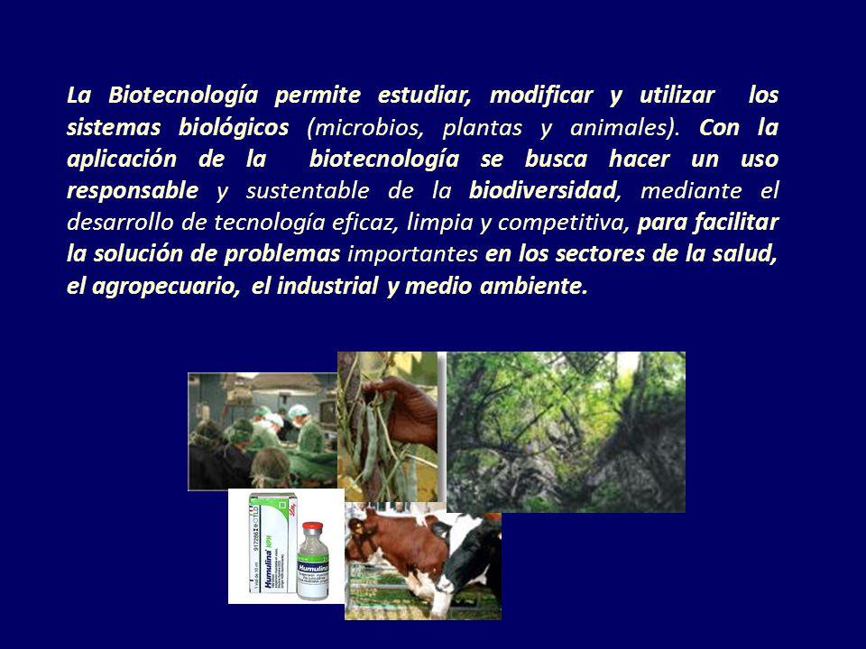 La Biotecnología permite estudiar, modificar y utilizar los sistemas biológicos (microbios, plantas y animales).