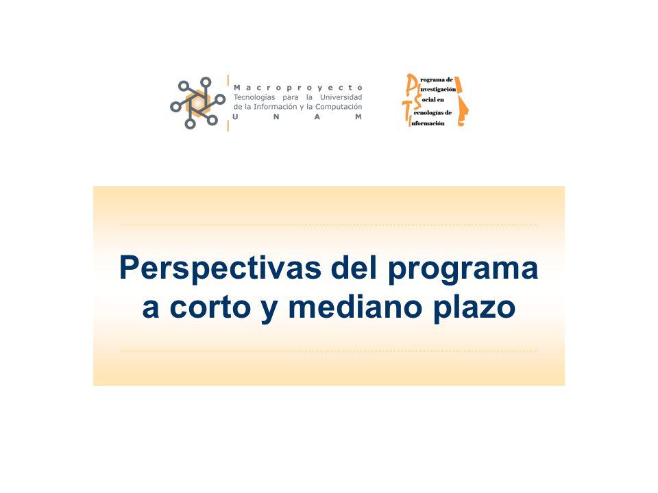 Perspectivas del programa a corto y mediano plazo