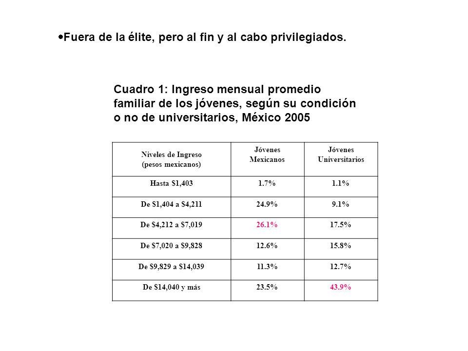 Fuera de la élite, pero al fin y al cabo privilegiados. Niveles de Ingreso (pesos mexicanos) Jóvenes Mexicanos Jóvenes Universitarios Hasta $1,4031.7%