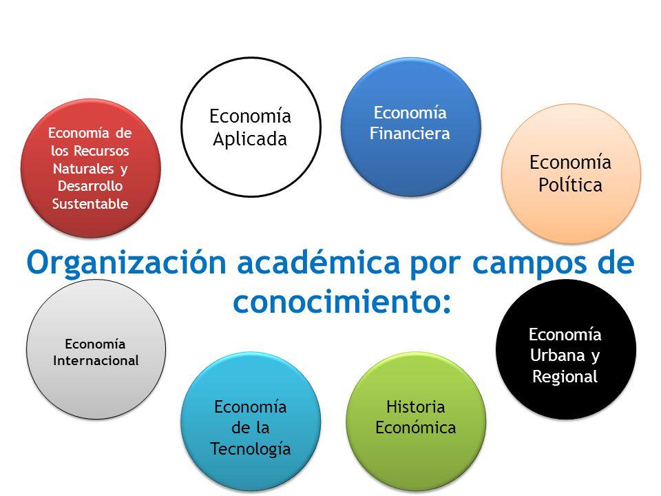Organización académica por campos de conocimiento: Economía de los Recursos Naturales y Desarrollo Sustentable Economía Aplicada Economía Financiera E