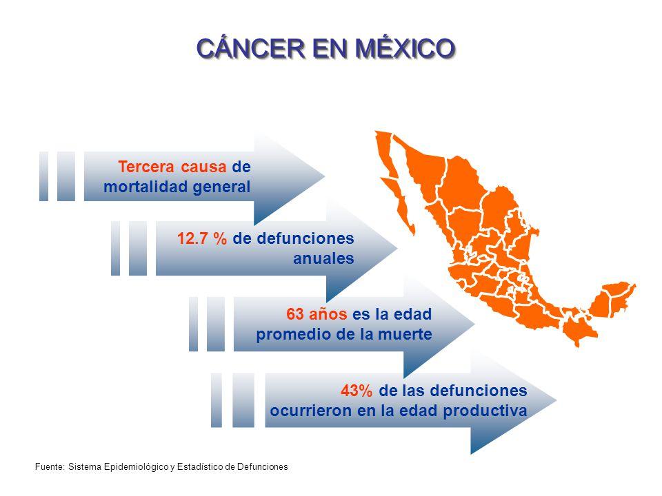 CÁNCER EN MÉXICO 63 años es la edad promedio de la muerte 43% de las defunciones ocurrieron en la edad productiva 12.7 % de defunciones anuales Tercer