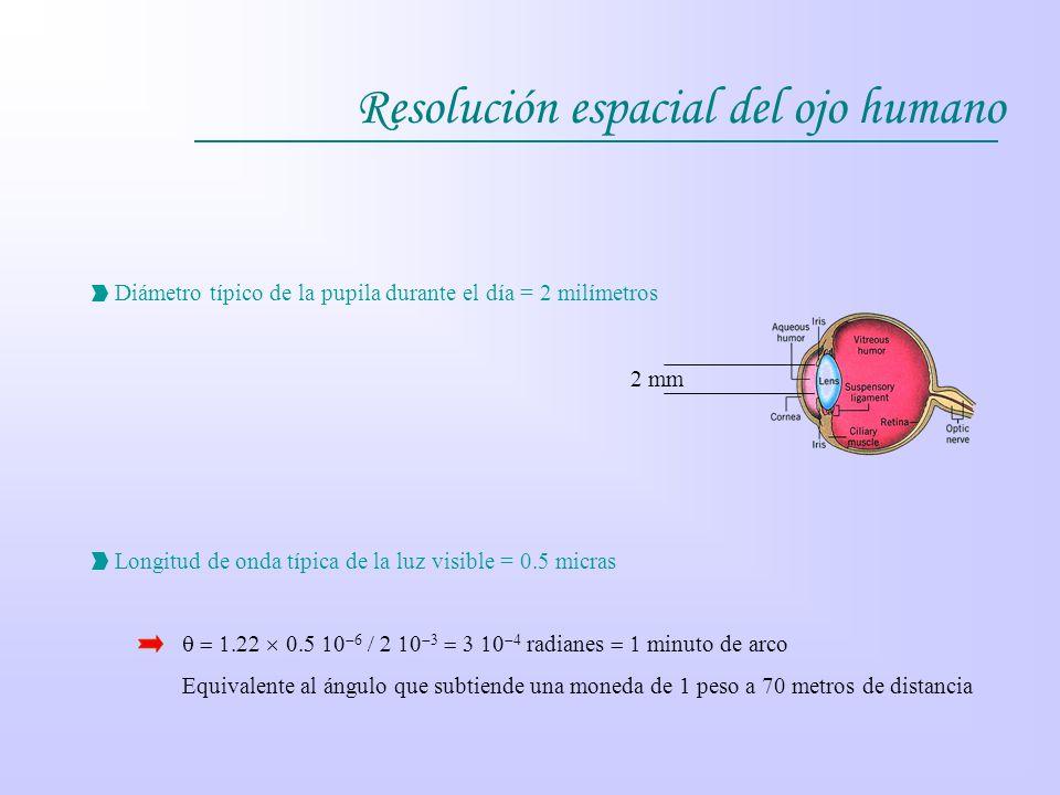 Resolución espacial del ojo humano Diámetro típico de la pupila durante el día = 2 milímetros 2 mm Longitud de onda típica de la luz visible = 0.5 mic