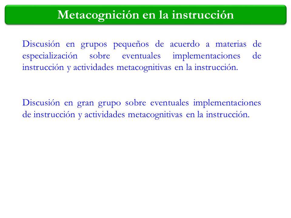 Discusión en grupos pequeños de acuerdo a materias de especialización sobre eventuales implementaciones de instrucción y actividades metacognitivas en