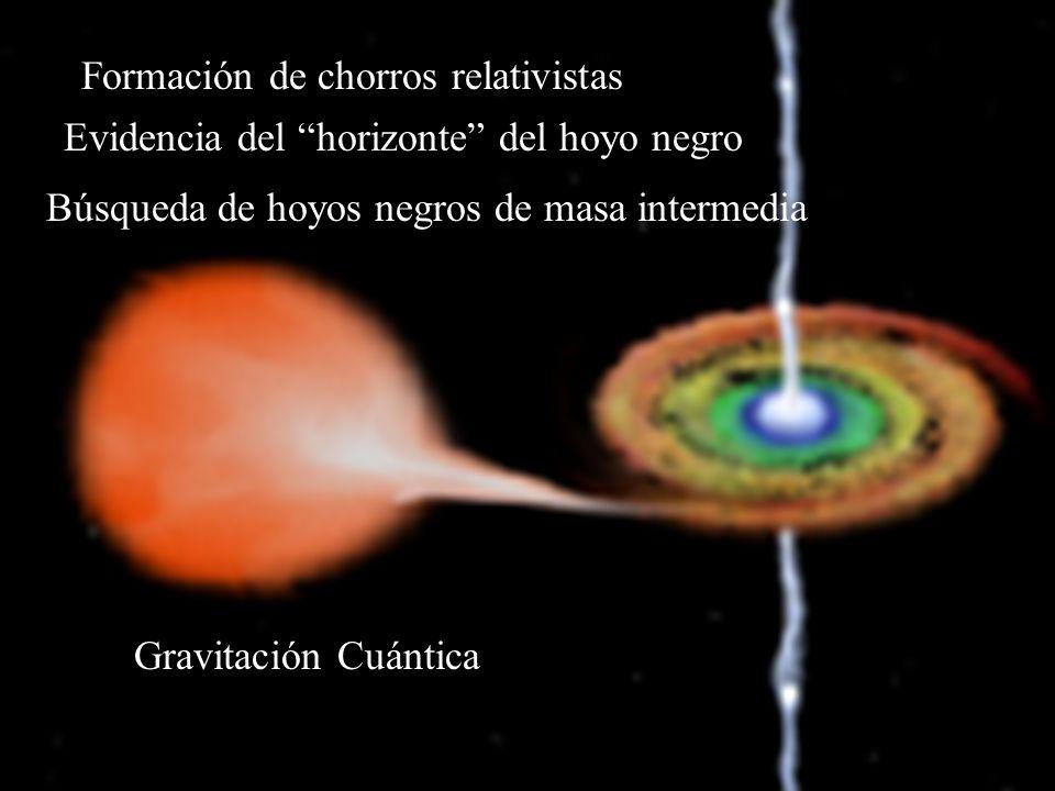 Formación de chorros relativistas Evidencia del horizonte del hoyo negro Búsqueda de hoyos negros de masa intermedia Gravitación Cuántica