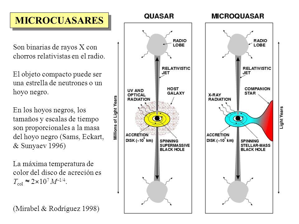MICROCUASARES Son binarias de rayos X con chorros relativistas en el radio.