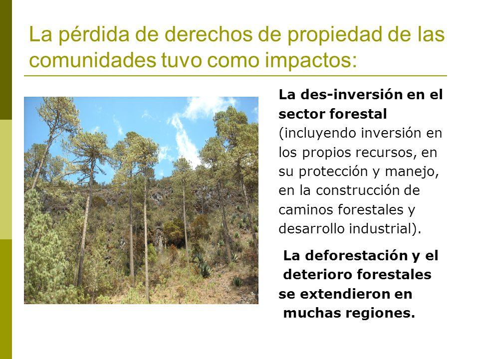 La pérdida de derechos de propiedad de las comunidades tuvo como impactos: La des-inversión en el sector forestal (incluyendo inversión en los propios recursos, en su protección y manejo, en la construcción de caminos forestales y desarrollo industrial).