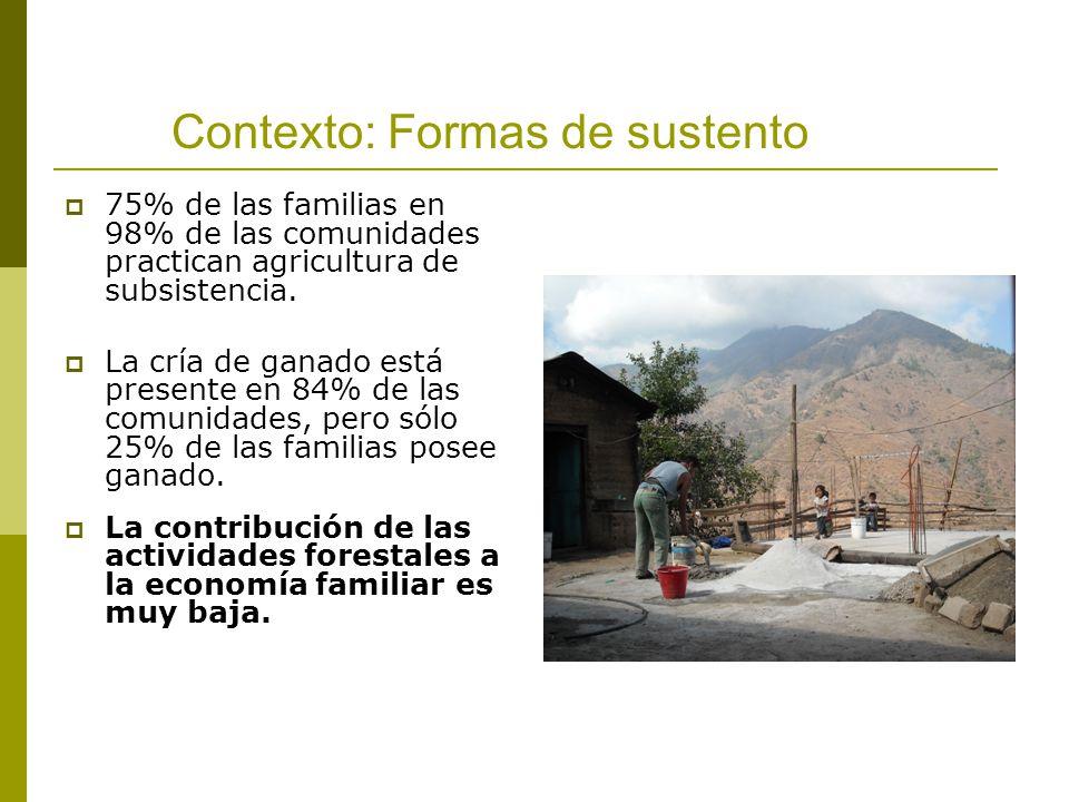 Contexto: Formas de sustento 75% de las familias en 98% de las comunidades practican agricultura de subsistencia. La cría de ganado está presente en 8