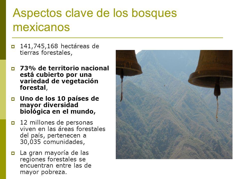 Aspectos clave de los bosques mexicanos 141,745,168 hectáreas de tierras forestales, 73% de territorio nacional está cubierto por una variedad de vegetación forestal, Uno de los 10 países de mayor diversidad biológica en el mundo, 12 millones de personas viven en las áreas forestales del país, pertenecen a 30,035 comunidades, La gran mayoría de las regiones forestales se encuentran entre las de mayor pobreza.