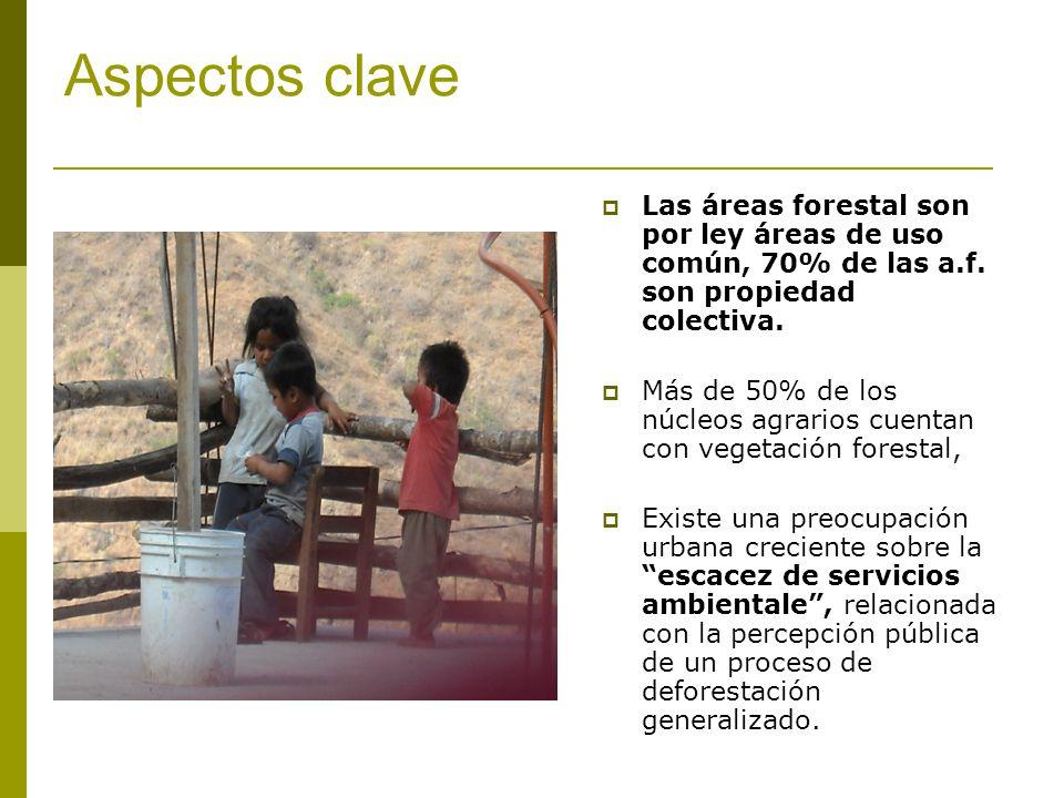 Aspectos clave Las áreas forestal son por ley áreas de uso común, 70% de las a.f. son propiedad colectiva. Más de 50% de los núcleos agrarios cuentan