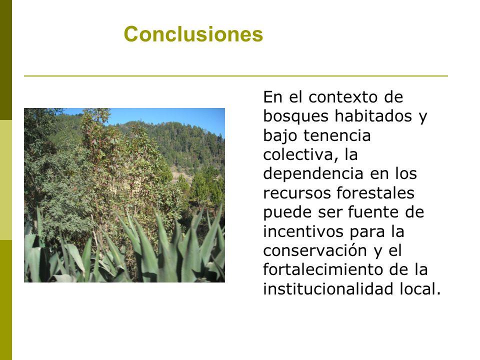 Conclusiones En el contexto de bosques habitados y bajo tenencia colectiva, la dependencia en los recursos forestales puede ser fuente de incentivos para la conservación y el fortalecimiento de la institucionalidad local.
