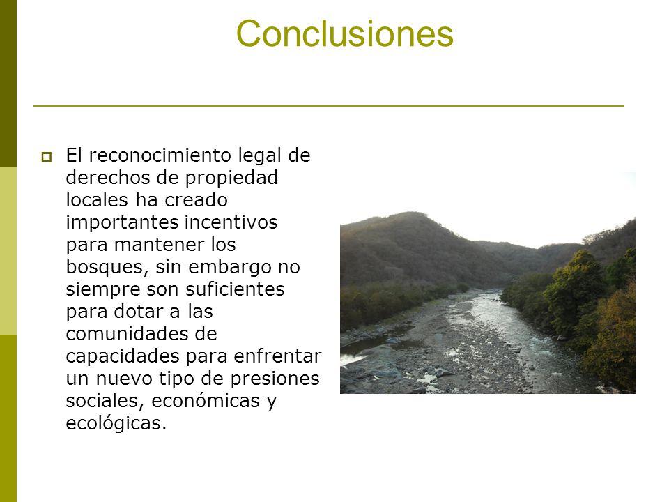 Conclusiones El reconocimiento legal de derechos de propiedad locales ha creado importantes incentivos para mantener los bosques, sin embargo no siemp