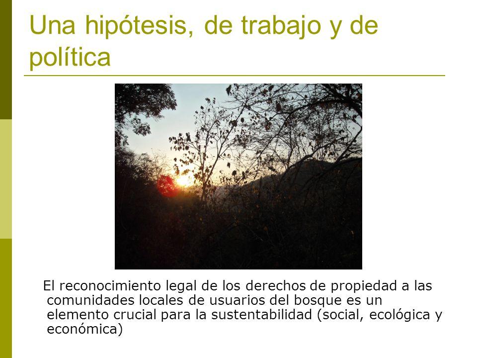 Una hipótesis, de trabajo y de política El reconocimiento legal de los derechos de propiedad a las comunidades locales de usuarios del bosque es un elemento crucial para la sustentabilidad (social, ecológica y económica)
