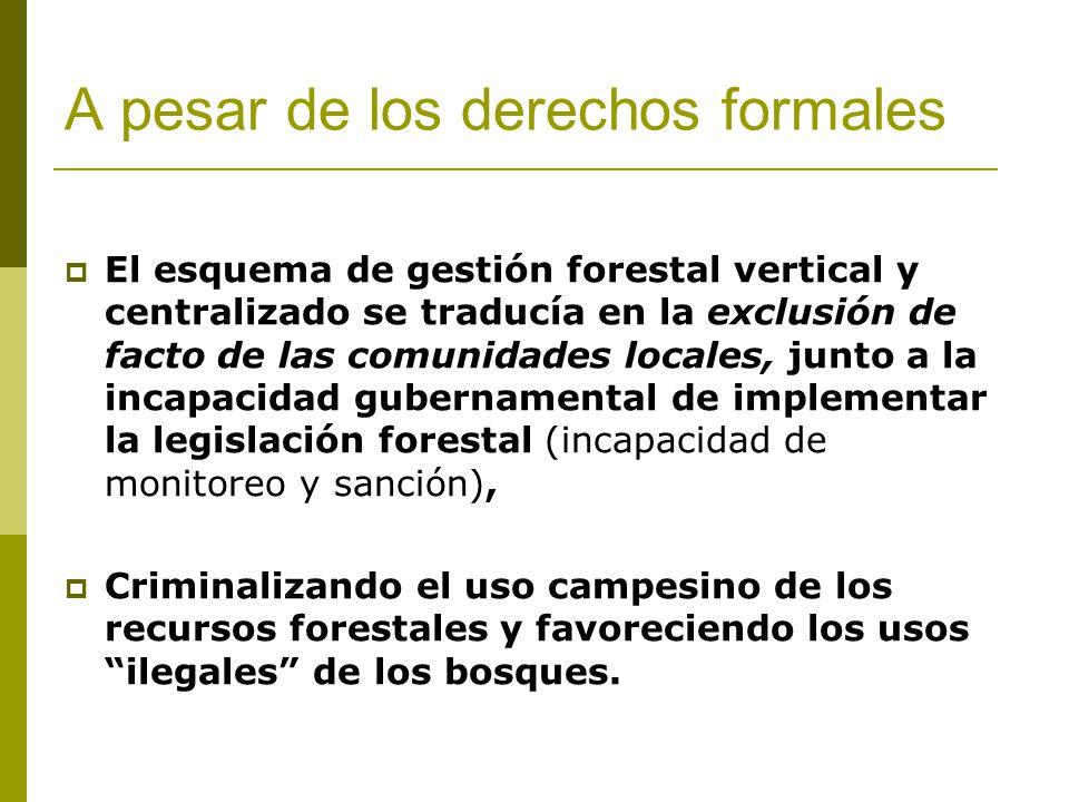 A pesar de los derechos formales El esquema de gestión forestal vertical y centralizado se traducía en la exclusión de facto de las comunidades locales, junto a la incapacidad gubernamental de implementar la legislación forestal (incapacidad de monitoreo y sanción), Criminalizando el uso campesino de los recursos forestales y favoreciendo los usos ilegales de los bosques.