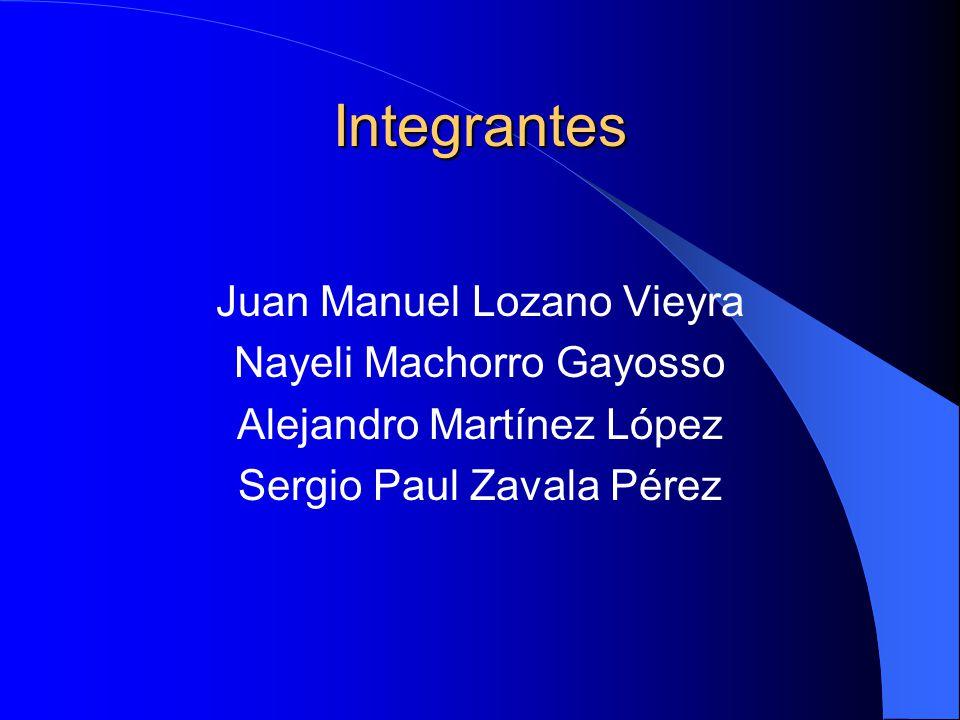 Integrantes Juan Manuel Lozano Vieyra Nayeli Machorro Gayosso Alejandro Martínez López Sergio Paul Zavala Pérez