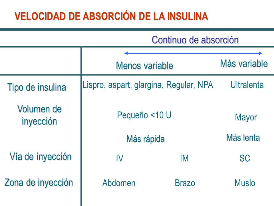 VELOCIDAD DE ABSORCIÓN DE LA INSULINA Continuo de absorción Menos variable Más variable Tipo de insulina Volumen de inyección Zona de inyección Lispro
