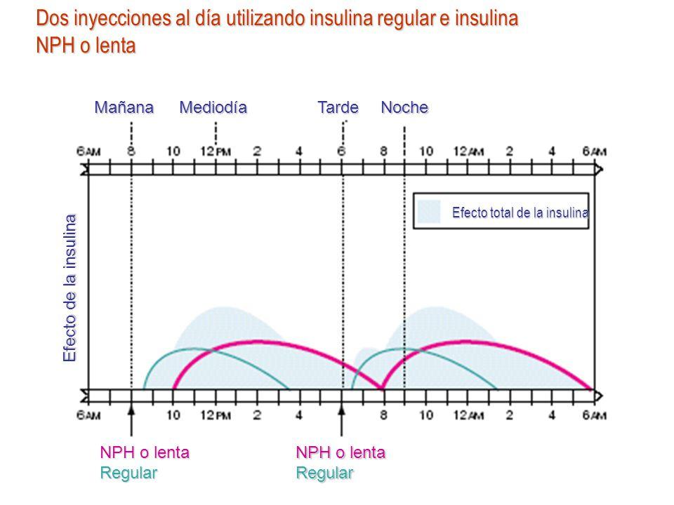 Efecto total de la insulina Efecto de la insulina MañanaMediodíaTardeNoche NPH o lenta Regular Dos inyecciones al día utilizando insulina regular e in