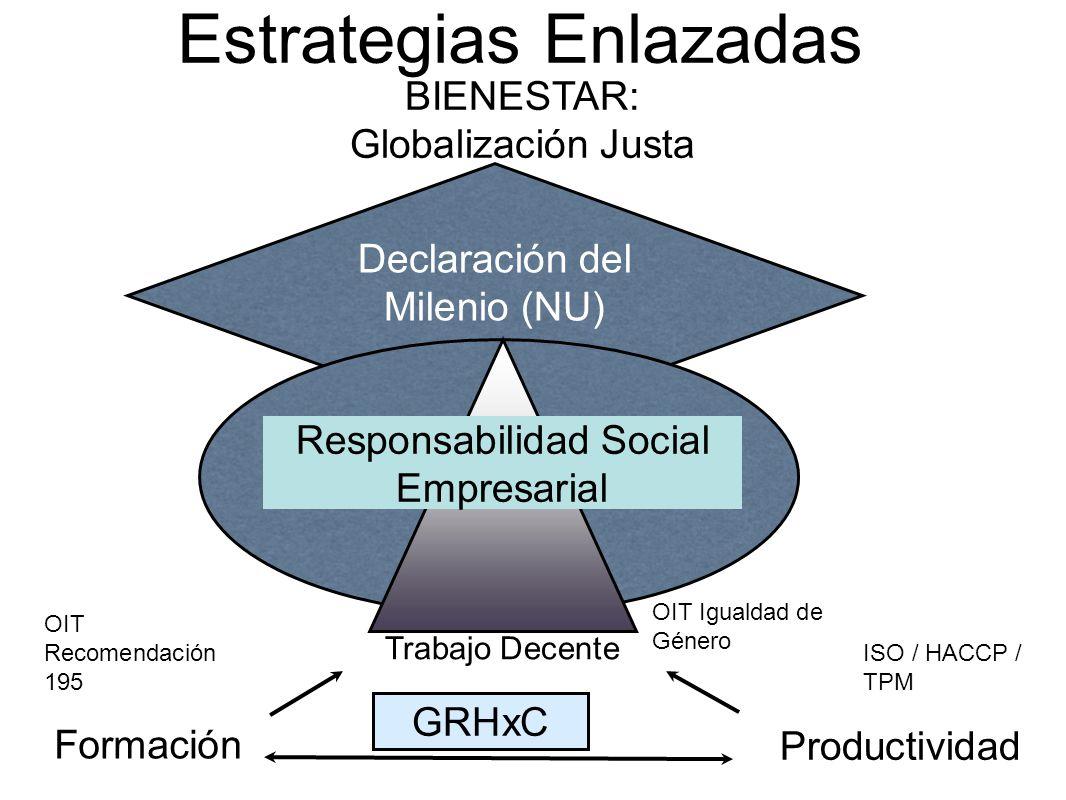 Estrategias Enlazadas Declaración del Milenio (NU) BIENESTAR: Globalización Justa Trabajo Decente Formación Productividad Responsabilidad Social Empre