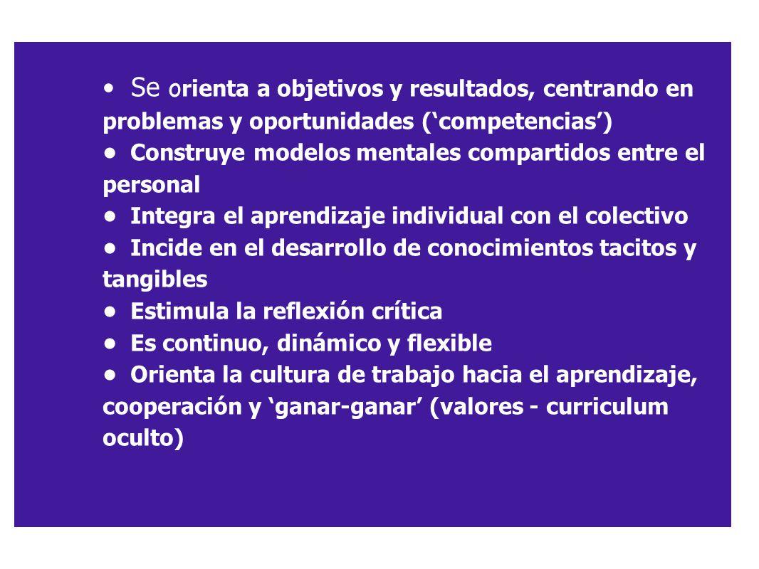 Se o rienta a objetivos y resultados, centrando en problemas y oportunidades (competencias) Construye modelos mentales compartidos entre el personal I